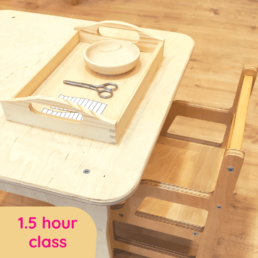 Parent-Toddler Class 1.5 hour