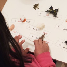 MontessoriAdjectives